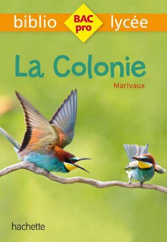 Bibliolycée Pro - La Colonie, Marivaux